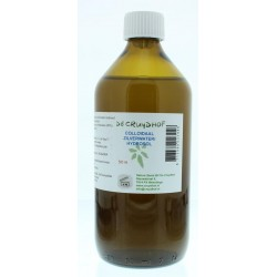 Absolute amla berry extract 500 mg 60vc
