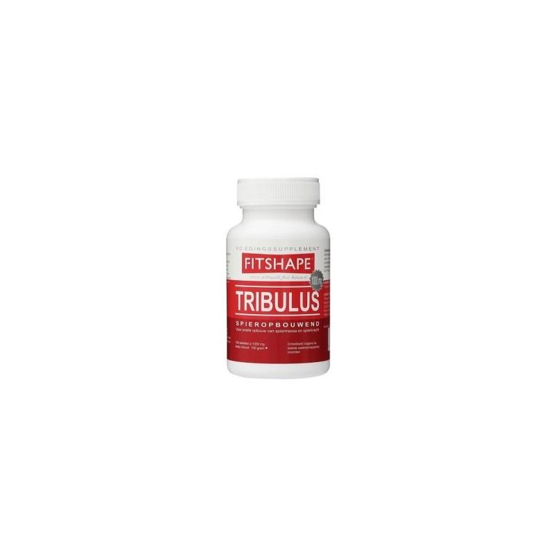 Vitamine B1 100 90tb