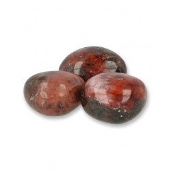 Animal parade acidophilus kidz 90kt