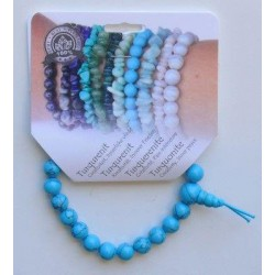 Ferro plus 10 ml 20amp