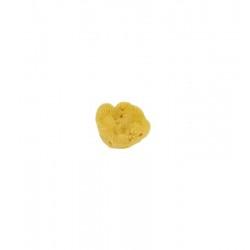 Alcochin activating lotion 500ml