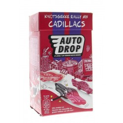 Crunchy ginger lemon 325g